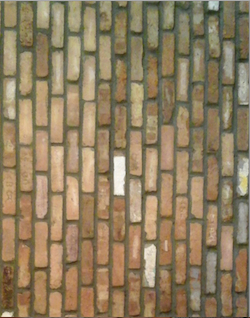 Old Chicago Brick veneer Wall - Ref. antique
