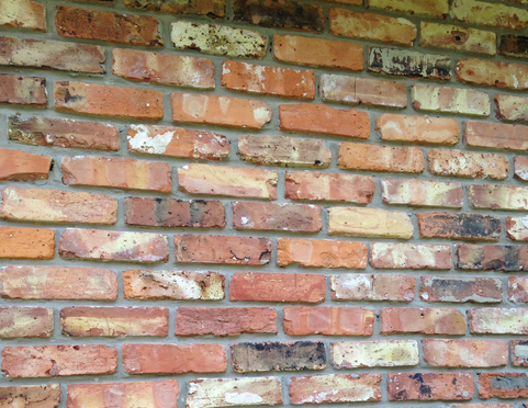 Reclaimed Old Chicago Brick